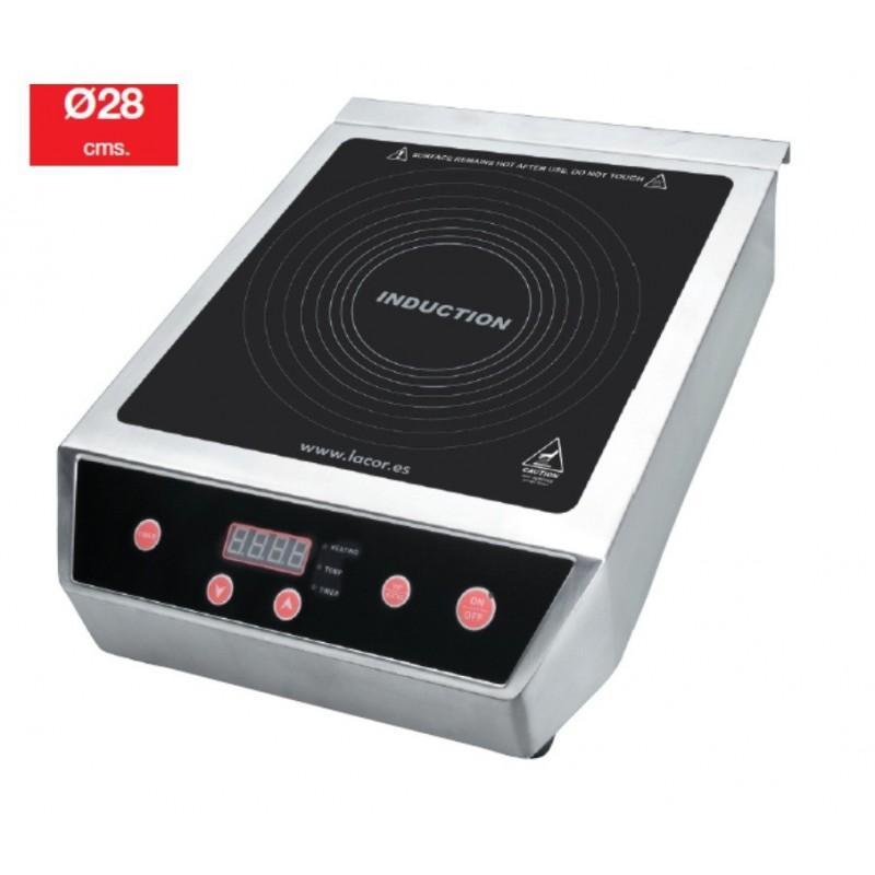 Placa cocina inducci n profesional for Cocina induccion precio